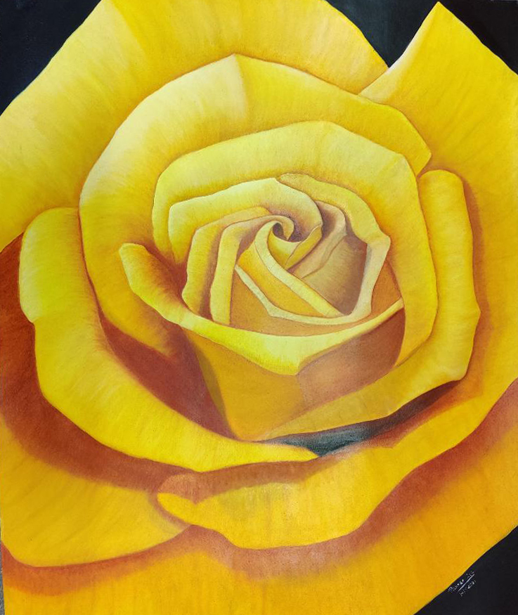 Yellow flower - oil on paper - 23 x 31 inches